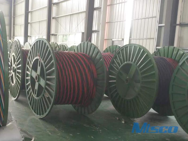 Multi-core Coiled Tubing