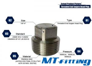 ASTM A105 F304H / 316H Stainless Steel Hex / Square / Round Haed Plug Threaded Forged Fittings