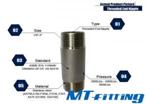 ASTM A106 F317L Stainless Steel Threaded End Nipple Forged High Pressure Fittings
