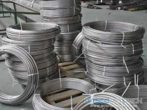 Small Diameter Round Seamless Stainless Steel ASTM A213 304L/316L Coil Tubing